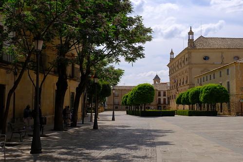 XE3F6963 - Palacio de Vázquez de Molina - Vazquez de Molina Palace  (Úbeda)