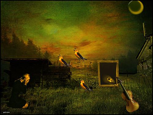 Requiem for a violin and three birds