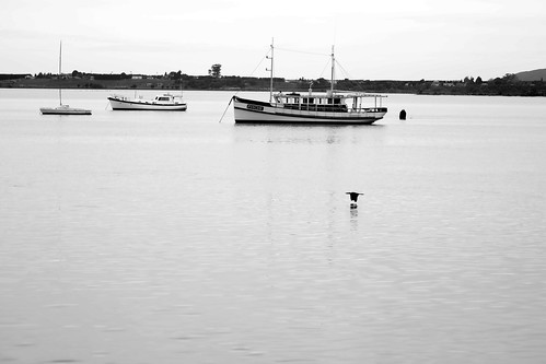 B&W boats (1 of 1)