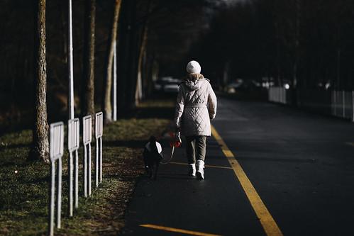 walking the dog in fashion