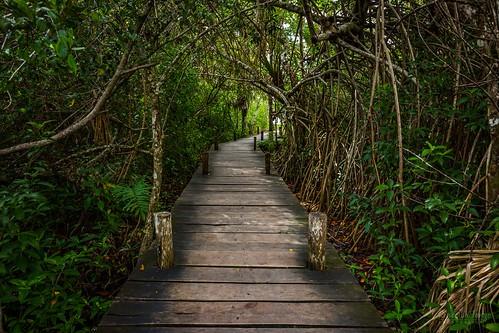 Path to Laguna Kaan Luum