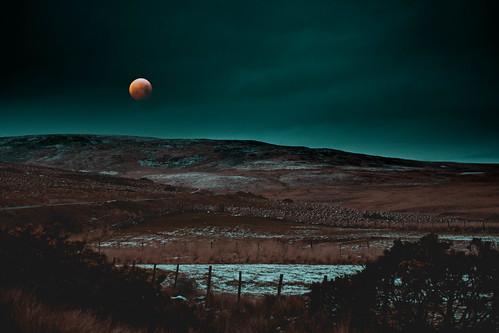 Blood Moon Wasteland