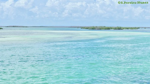 Colorful Caribbean in Cayo Guillermo, Cuba