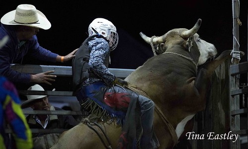 Mulgowie Bull ride – Tina Eastley