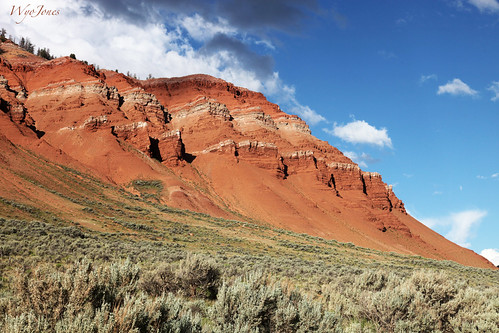 Scalloped Red Cliffs