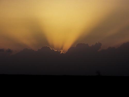 Lone Tree Sunset....