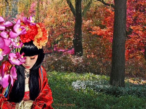 Asian Autumn Lady