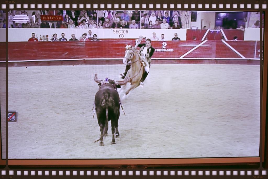 XX Grande Corrida TV Norte: Filipe Gonçalves, R.T.P. em directo, 22/VII/16.