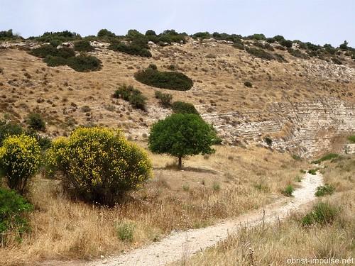 Nahal HaEla Israel