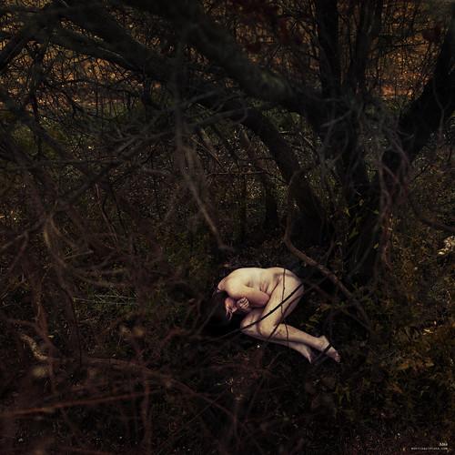 316/366 - Mama - EXPLORE Nov 11, 2012