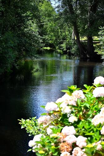 MI ORILLA Y TU RIO.    My bank and a river.