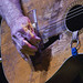 Willie Nelsons Guitar _Trigger_