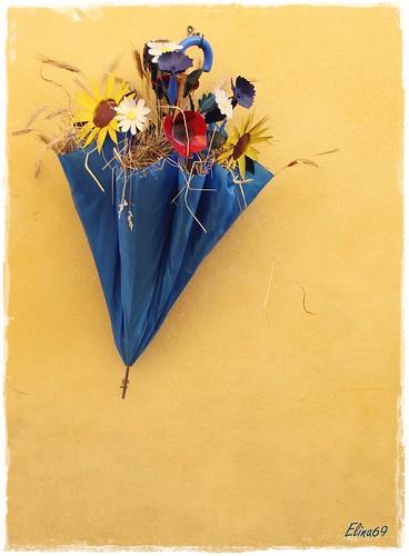 Festa di San Tito 2016, Via Novara
