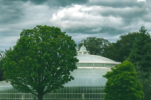 UK - Scotland - Glasgow - Botanic Gardens
