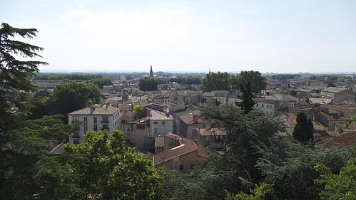 Avignon, F