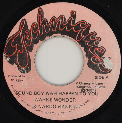 Wayne Wonder and Nardo Ranking - Sound Boy Wah Happen to You (198x)