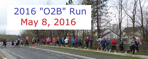 2016 O2B (Orleans-to-Bank) Run, participants