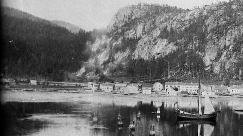 Vika på 1890-tallet