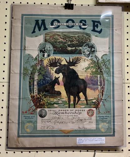 1926 Loyal Order of Moose Membership Lodge No. 1658 membership certificate of initiation in Timmins Ontario