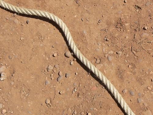 La corda del bou capllaçat d'Amposta by joseptorta.