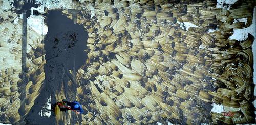 toxic bird - mural imposible