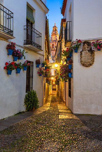 Between Flowerpots    Entre Macetas (Calleja de las Flores, Córdoba. Andalucía)